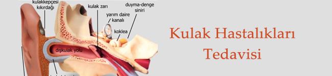 Kulak Hastalıkları Tedavisi